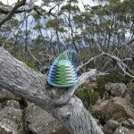 Telephone wire basket in progress, on a dead log in the bush near Smiths Monument, on top of Mt Wellington, Tasmania.